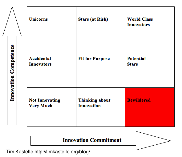 Bewildered Innovators and the Innovation Matrix
